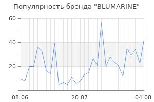 Популярность бренда blumarine