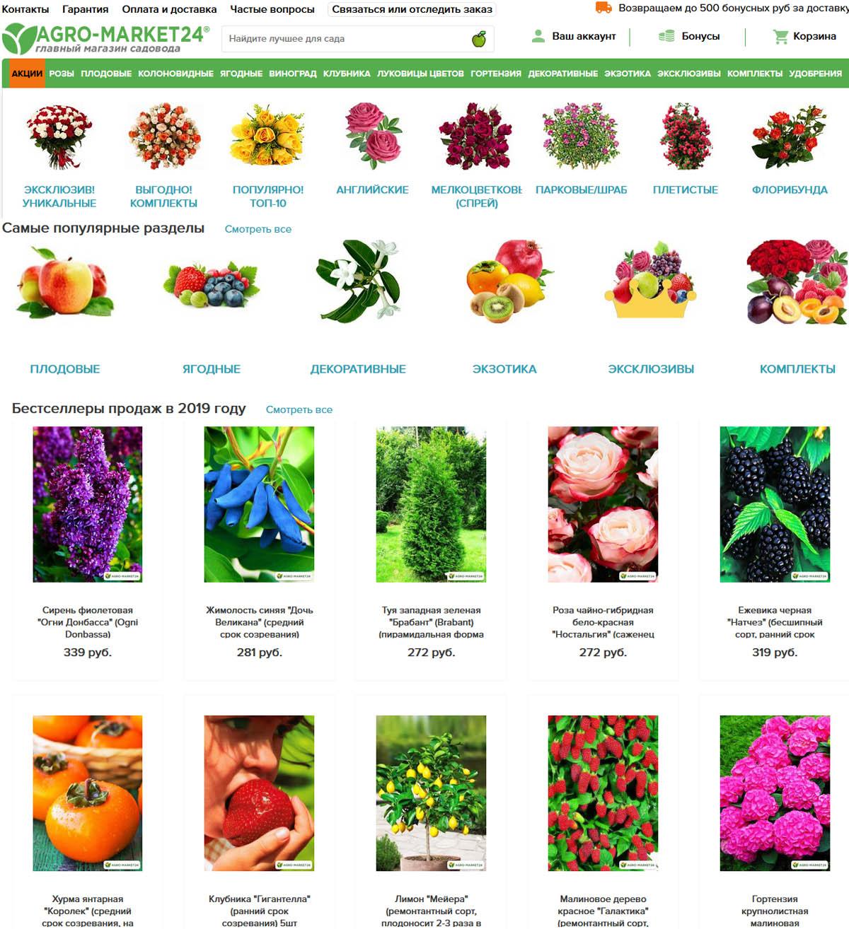 Агромаркет Интернет Магазин Посадочных Материалов Официальный Сайт