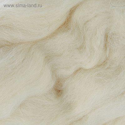 Шерсть для валяния 100% полутонкая шерсть 50гр (166-Суровый)